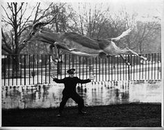Funny Vintage Photos from London Zoo