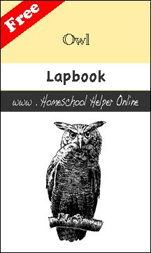 Owl Moon-- Free Owl Lapbook - Homeschool Helper Online