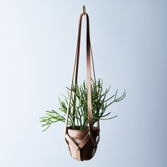 Leather Plant Hanger on Food52