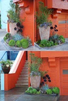 Patrick Lannan's (designer at Flora Grubb Gardens) home entry garden