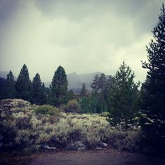 Rain clouds and sage brush...love the smell