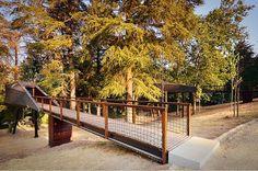 +mood: Uma casa na árvore #arquitectura #arquicteture #archymood #positivemood #+mood #pedrassalgadas #ecoresort #treehouse #snake