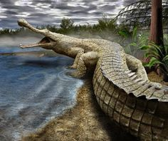 "BioOrbis: O Maior ""crocodilo"" do Jurássico"