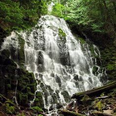 Another shot of beautiful Ramona Falls.