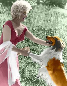 Marilyn Monroe And Lassie At The Ray Anthony Party
