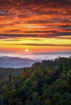 Blue Ridge Parkway, Montañas Blue Ridge, Blue Ridge Mountains, Nc Mountains, Sunrise Photography, Landscape Photography Tips, Family Photography, Nature Photography, Animal Photography