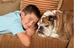 The Most Popular Kid-Friendly Dogs