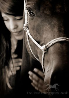 I really want to get into horse photography :) Makes me smile.