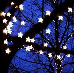 twinkle twinkle little star lights Twinkle Twinkle Little Star, Twinkle Lights, String Lights, Icicle Lights, Love Stars, Stars And Moon, Night Stars, Jolie Photo, To Infinity And Beyond