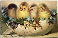 Vintage+Easter+Gladness+postcard+chicks+in+half+egg+with+lily+of+the+valley,+blue+flower