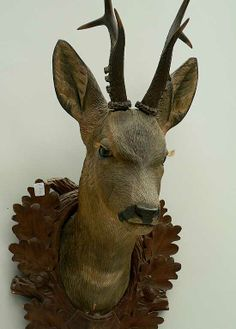 buy antique deer heads, stag heads and other trophys direct from the south of germany. in our gallery you'll find a selection a fine rustic and black forest antiques. Stag Head, Deer Heads, Antler Art, Dappled Light, Roe Deer, Deer Art, Faux Taxidermy, Animal Heads, Black Forest