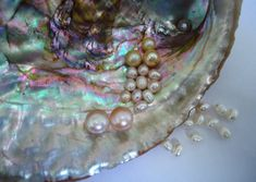 Mother of Pearl Jewelry - the other side of the Pearl - Birth Stone Magic No Ordinary Girl, Mother Of Pearl Jewelry, Sea Witch, Witch Aesthetic, Cultured Pearls, Pearl White, The Little Mermaid, Oysters, Iridescent