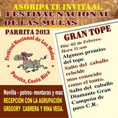 Festival Nacional de las Mulas  Del 24 de enero al 03 de febrero