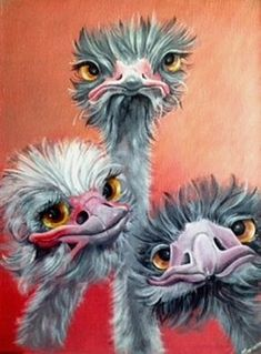 3 Crazy Ostrich Diamond Painting Source by martialmouret Chicken Painting, Chicken Art, Cartoon Kunst, Cartoon Art, Cross Paintings, Animal Paintings, Bird Drawings, Animal Drawings, Art Fantaisiste