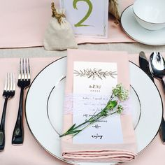 Blush Napkins 12-pack, Blush Napkins for Weddings and Events | Blush Wedding Table Linens, Wholesale Cloth Napkins