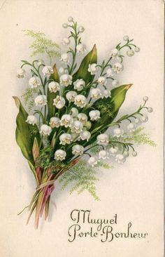 Vintage French Greeting Card - Muguet - Lily of the Valley bouquet