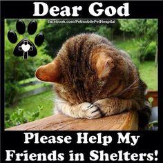 Please help......