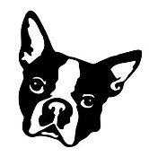 Boston Terrier Head Decal Sticker