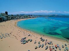47 Ideas De Gran Canaria Natural Islas Canarias Islas Canario