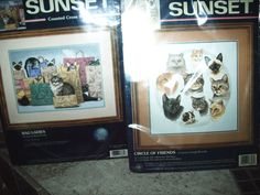 Sunset Counted Cross Stitch Kit Bag Ladies 13662 & 13625 circle of friends