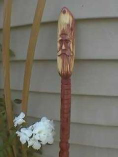 First walking stick