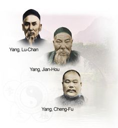 Tai Chi Chuan - Taijiquan - Yang Style