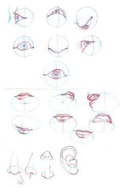 eyes repinned by www.BlickeDeeler.de ✤ || CHARACTER DESIGN REFERENCES | Find more at https://www.facebook.com/CharacterDesignReferences if you're looking for: #line #art #character #design #model #sheet #illustration #expressions #best #concept #animation #drawing #archive #library #reference #anatomy #traditional #draw #development #artist #pose #settei #gestures #how #to #tutorial #conceptart #modelsheet #cartoon