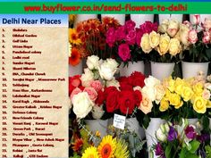 Delhi online florist help To Send Flowers To Delhi Fast Flowers, Send Flowers, 24 7 Delivery, Online Florist, Gift Cake, Green Park, Flowers Online, Flower Delivery, Fresh Fruit