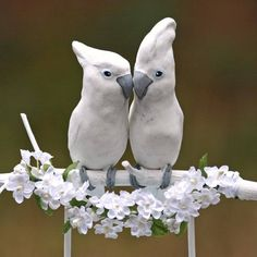 Handmade Cockatoo Wedding Cake Topper by TeaOlive on Etsy