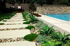 Plantas perfectas para sembrar en un camino de jardín