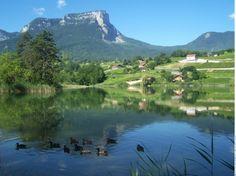 Patrimoine naturel - Lac Saint André - Les Marches - Savoie Mont Blanc (Savoie, Haute-Savoie – Alpes, France) - Savoie Mont Blanc (Savoie, H...