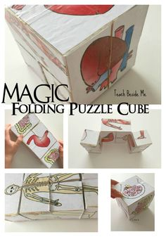 Build your own magic folding puzzle cube with any pictures you want! Everyone will love playing with this one! Human Body Activities, Science Activities For Kids, Stem Science, Preschool Science, Science Experiments Kids, Science Lessons, Teaching Science, Stem Activities, Science Projects