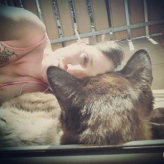 Wahre Liebe zwischen Tier und Mensch 😍😘 #liamthesiam am sonnen 😀#lovemycat #siamkatze #thaikatze #katzenliebe #siamcat