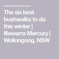 The six best bushwalks to do this winter | Illawarra Mercury | Wollongong, NSW Best Bucket List, Green Texture, Picnic Area, No Time For Me, Mercury, Activities, Winter, Winter Time, Winter Fashion