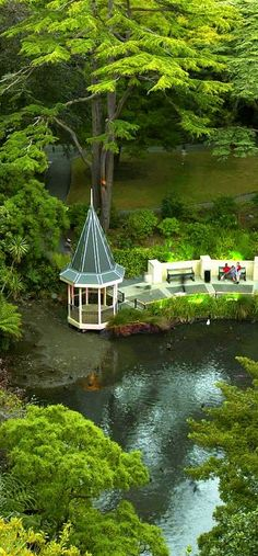 Duck Pond - Wellington Botanic Gardens, Wellington, New Zealand