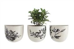 6L x 3W x 6H Stoneware Wall Vase w/ Floral Decal, Black/White, 3 Styles