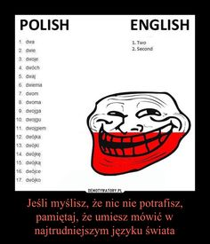Oh so very true ! Polish To English, Learn Polish, Polish Language, Funny True Quotes, Its Time To Stop, Eleven Stranger Things, Wtf Funny, Viera, Make Me Happy