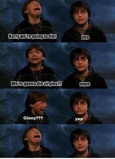 Hilarious Ron and Harry meme