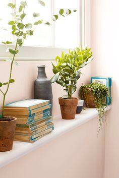 dulux blush pink house vibe pinterest living room. Black Bedroom Furniture Sets. Home Design Ideas