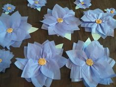 5 Large Tissue Paper Flowers/Flower Wall Decor/Garden Party Wall Decor