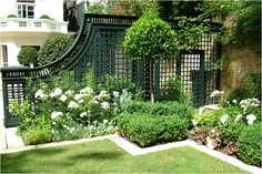garden trellis in black, love it with white flower and the varied textures of the green