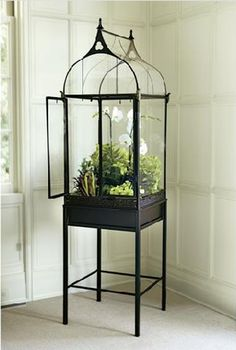 Modeled after the Wardian cases first built for growing ferns in the early this terrarium creates a warm, humid environment that encourages plant growth, no matter what the temperature outside. The terrarium is crafted from wrought iron with a poin