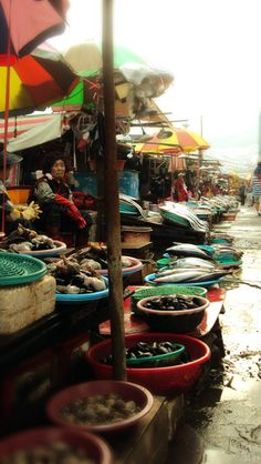 Fish Market in Busan, South Korea