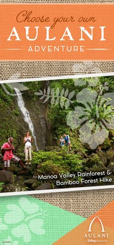 Behold natural splendor on this privately guided hike through a lush Hawaiian rainforest. Experience O'ahu on the Manoa Valley Rainforest & Bamboo Forest Hike the next time you visit Aulani!