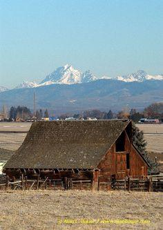 Old brown barn at sunrise and Mount Stuart Range-Horz.jpg 566×800 pixels