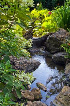 Woodland garden stream and waterfall Backyard Stream, Garden Stream, Backyard Water Feature, Ponds Backyard, Backyard Waterfalls, Garden Ponds, Koi Ponds, Modern Backyard, Large Backyard