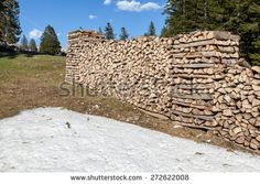 stack of meter length logs prepared to be transported and sold as firewood; photo was taken in early spring when there is still some snow laying on the meadow