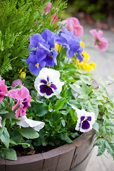 spring flower container....