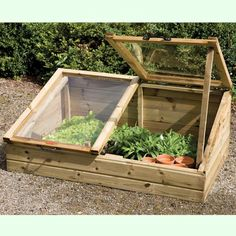 Today, I bought some old windows to make a cold frame.