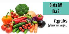 Ablaze Gm Diet Side Effects Super Dieta, Gm Diet Plans, Ms Gs, Sin Gluten, Diet Tips, Diet Ideas, Health Diet, I Foods, Food And Drink